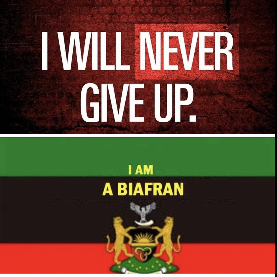 IPOB BIAFRA REPLACED FACEBOOK