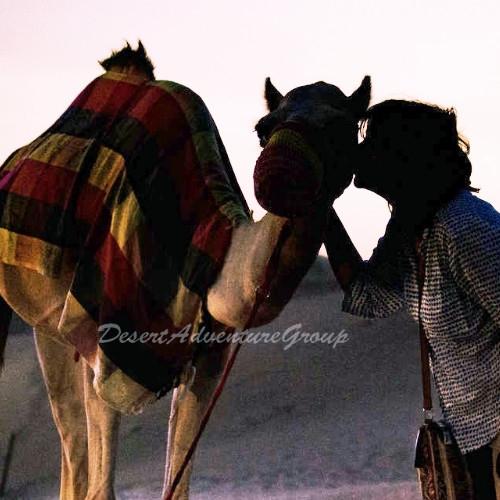 Desert Adventure Group Dubai